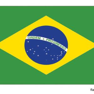 Braziliaanse vlag - Vlag van Brazilië