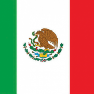 Mexicaanse vlag - vlag van Mexico - 150x90cm