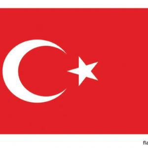 Vlag van Turkije - 150x90cm